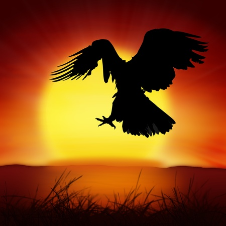 sunset painting: silhouette of eagle with big sun background