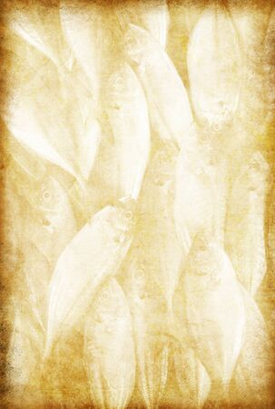 burned paper: fish pattern on old grunge paper ,retro background Stock Photo