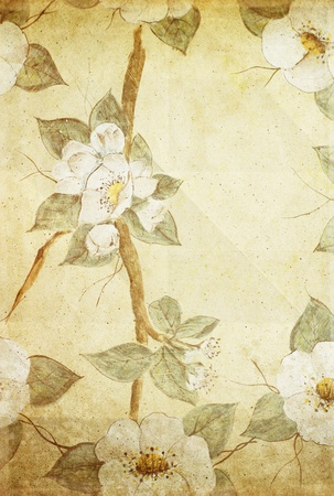 dried leaf: retro floral pattern on old paper