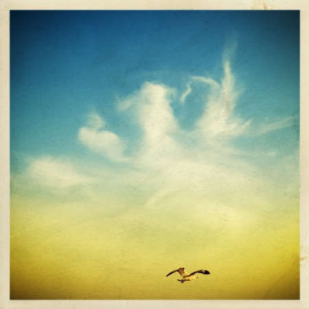 free vintage background: seagulls in the sky on an old grunge paper Stock Photo