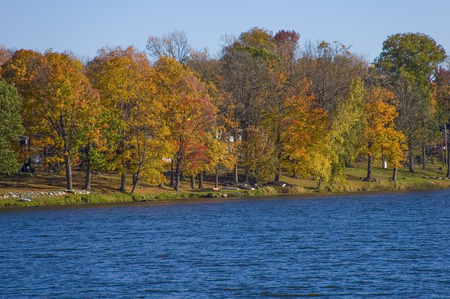 Autumn scenery with trees by the lake.