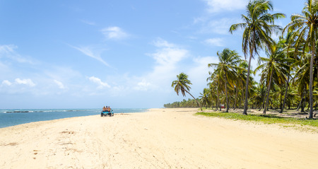 Unblemished beauty of the Gunga  beach , Alagoas state,Brazil .