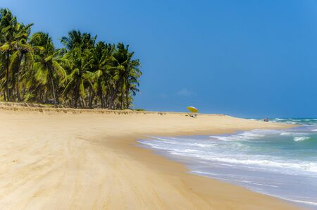 unblemished: Unblemished beauty of the Gunga  beach , Alagoas state,Brazil .