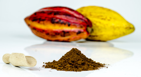 Composition with cocoa powder and cocoa pods on white background,