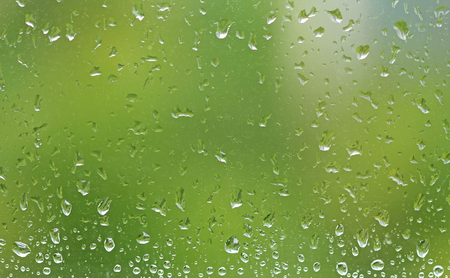 Drops of rain on a glass window. Green summer background from a wet window with drops of rain.