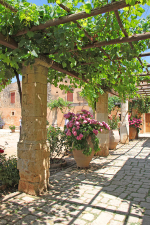 Photo made in Greece. garden with roses, abandoned village in Crete, Greece, roses in large pots