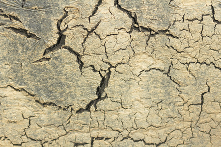 Black Cracks on Beige and Gray Background. Gray and Beuge Background. Barren Earth. Dry Cracked Earth Background. Soil In Cracks.Creviced Texture. Drought Land. Environment Drought.