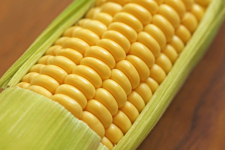 Corn on cob on rustic wooden table and wooden background from a natural wooden. Golden bright yellow corn. Tasty and healthy food.
