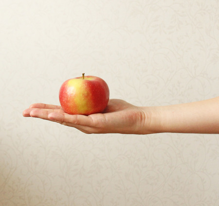 An Apple. The Fruit of the Red Apple Lies on the Hand