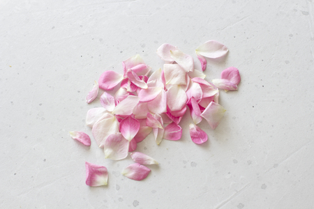 Rose petals lie on a light gray concrete background. Tenderness, wedding, postcard and cover for decoration. Flat Lay, Top View, Copy Space For Your Text.
