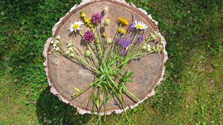 Summer wildflowers on wooden background. A beautiful summer bouquet on a wooden background. Chamomile, wild onion, Veronica long-leaved. Multicolored bouquet, motley grass. View from above, flat lay.