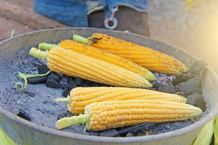 Yellow corn is baked or roasted on charcoal. Street food in India. Barbecue with corn.