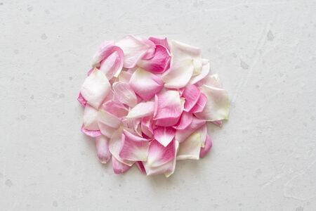 Rose petals lie on a light gray concrete background. Tenderness, wedding, postcard and cover for decoration. Flat Lay, Top View, Copy Space For Your Text. Standard-Bild - 129251099