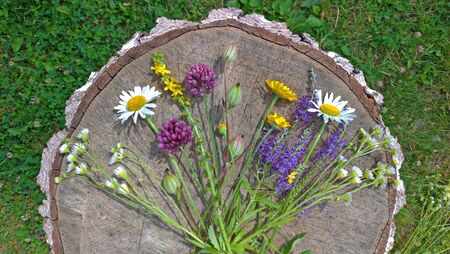 Summer wildflowers on wooden background. A beautiful summer bouquet on a wooden background. Chamomile, wild onion, Veronica long-leaved. Multicolored bouquet, motley grass. View from above, flat lay. Reklamní fotografie - 129375730