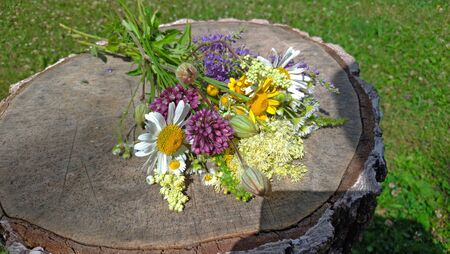 Summer wildflowers on a wooden background. A beautiful summer bouquet on a wooden background. Chamomile, wild onion, Veronica long-leaved. Bright multicolored bouquet, motley grass. Reklamní fotografie - 129376026