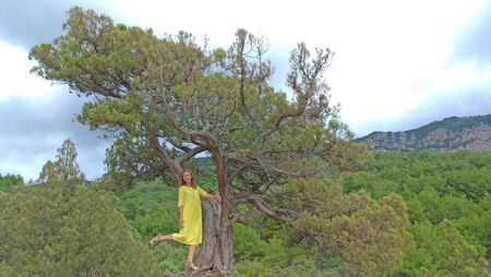 A girl in a yellow dress in nature in the mountains stands on a tree. Beautiful landscape. Crimea, mountains and the sea. Summer nature.