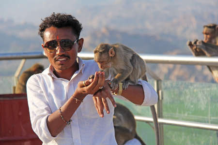 India, Hampi, January 31, 2018. Indian tourist man feeds a monkey on the hill of Anjaneya and Hanuman temple in Hampi. The monkey takes food from his hand. Publikacyjne