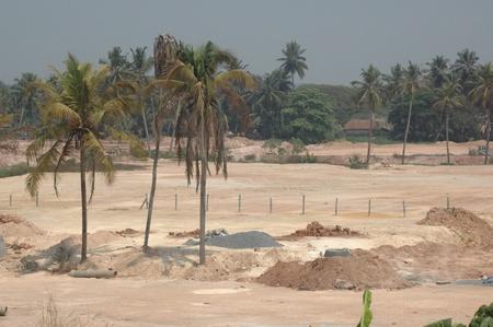deportment: deforestration