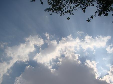 spongy: spongy clouds