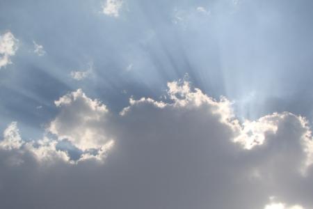 vend: holy sunlight