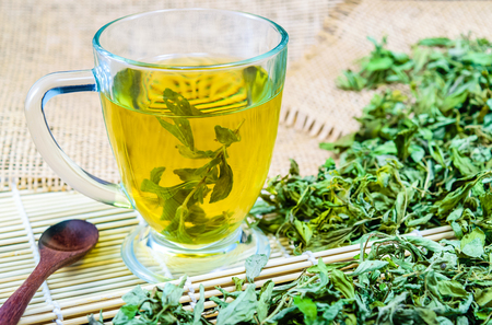 Dry stevia leaves with a glass stevia infusion Stockfoto