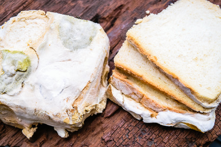Mold up the bread that has expired on an old wooden