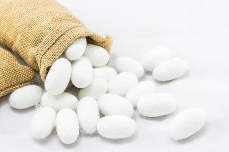 Silk cocoon in sack on white background Archivio Fotografico