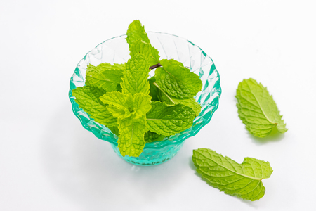 fresh peppermint in green cup isolated on a white background. 写真素材
