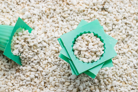 perlite with cup of planting set for hydroponics vegetable Stock Photo