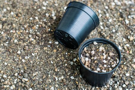 Mixed soil for growing cactus with black planting cup Zdjęcie Seryjne