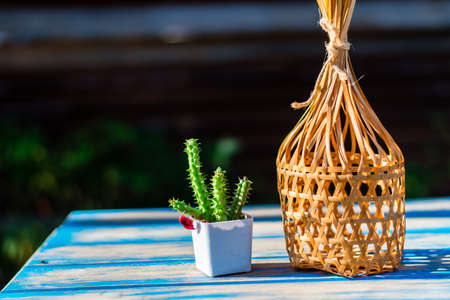 Small cactus with round bamboo basket on a wooden table