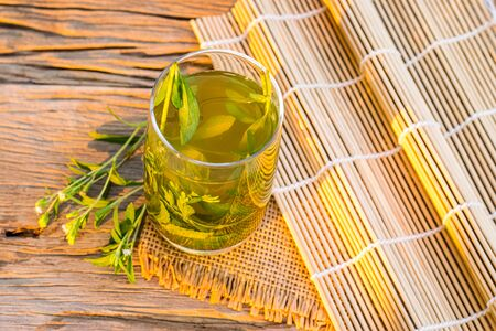 Stevia tea in a glass with stevia leaves in the morning sunshine 免版税图像