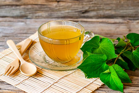 Plu Kaow (Houttuynia cordata Thunb ) tea in a glass and Plu Kaow leaf with wooden spoon have medicinal properties on the old wooden table