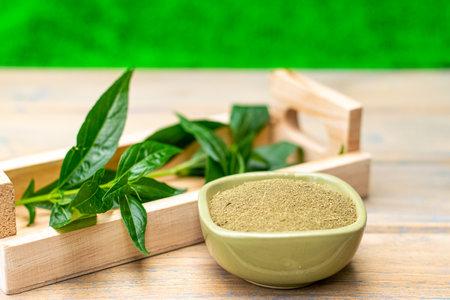 Andrographis paniculata plant and Andrographis paniculata powder, Traditional thai herbs.