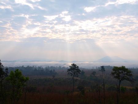 Nature Landscape bright at Thung Salaeng Luang National park