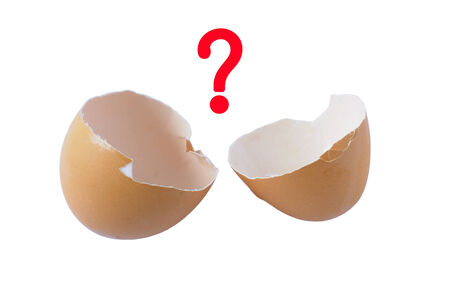 Question mark on the egg shell