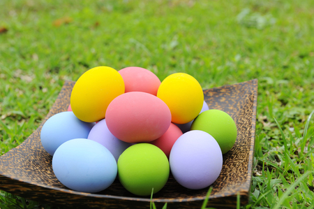 Colorful eggs in coconut shell.