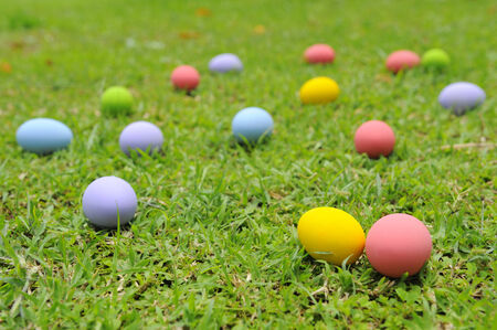 Easter eggs on a meadow.