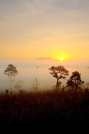 Sunrise at Thung Salaeng Luang National park photo