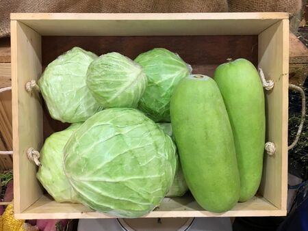 Cabbage and  Winter melon in wooden box  Stock Photo