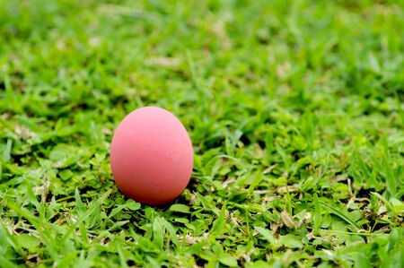 Red easter eggs lay on the grass.