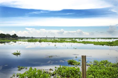 Little freshwater Phatthalung Stock fotó