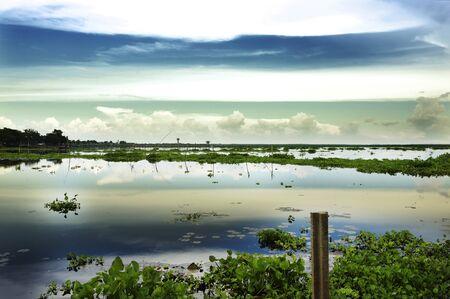Little freshwater Phatthalung Sajtókép