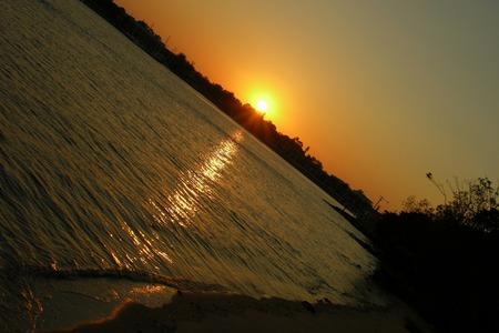 putney: Sunset at Putney park, Sydney, Australia     Stock Photo