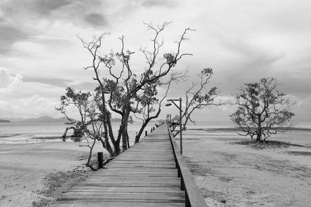 ebb: Bridge over the sea during ebb tide in black and white Stock Photo