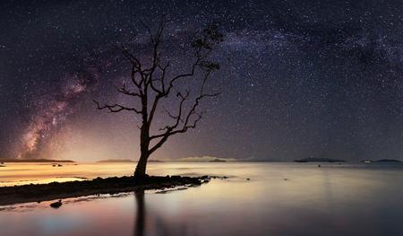 은하수와 별이 빛나는 밤의 파노라마보기 스톡 콘텐츠