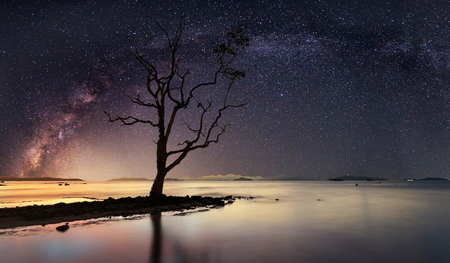 Panoramic view of starry night with milky way Archivio Fotografico