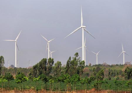 energia electrica: Los molinos de viento para la producci�n de energ�a el�ctrica