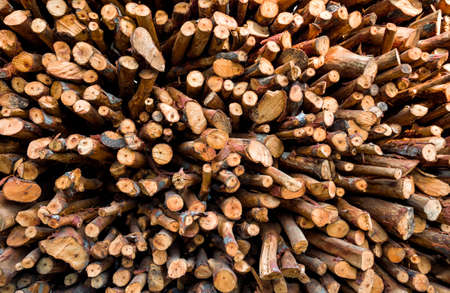 pile of logs: Pile of wood logs ready for winter - wood logs background