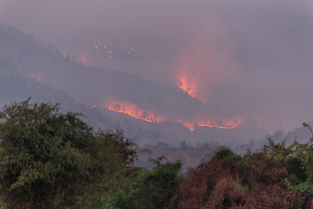 wildfire: Wildfire on the mountain, Thailand